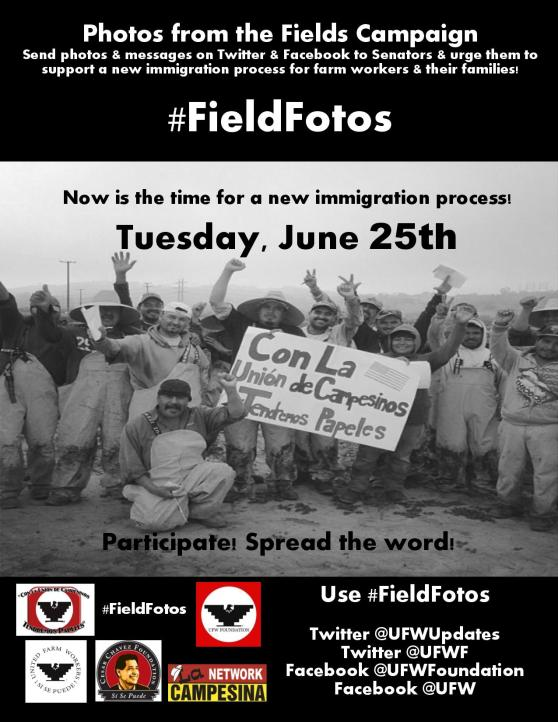 FieldFotos- ENGLISH Farmworkers  Supporter Flyer  Steps-page-001